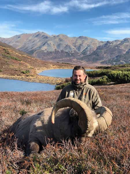 Read more about the article Kamchatka Snow Sheep
