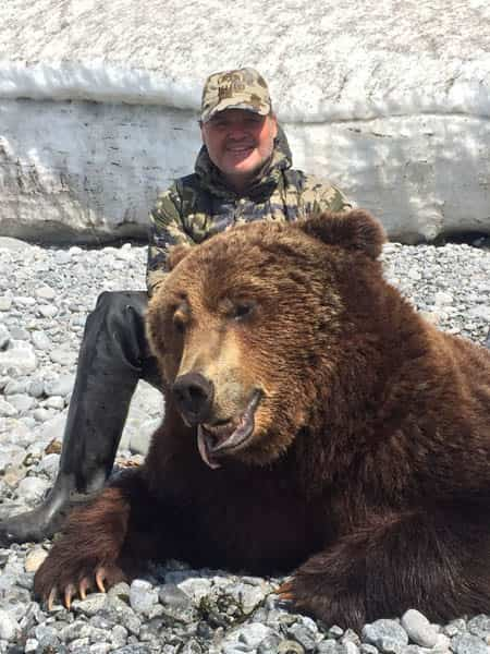 Magadan Brown Bear
