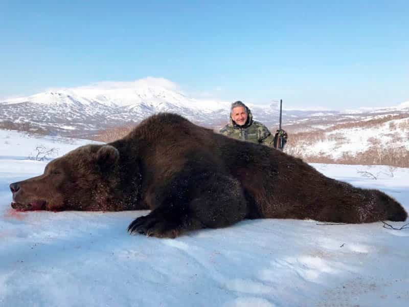 Read more about the article Kamchatka Brown Bear
